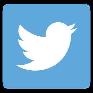 Twitter Dino Tim
